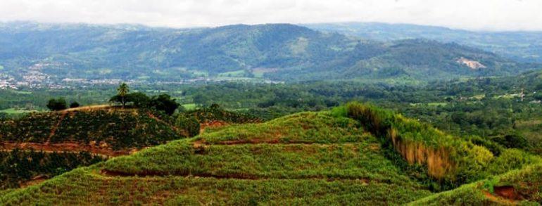 Un voyage riche en dépaysement au Costa Rica
